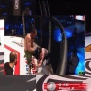 Video: Brutal finishes this weekend, 2 devastating knees and 1 head kick